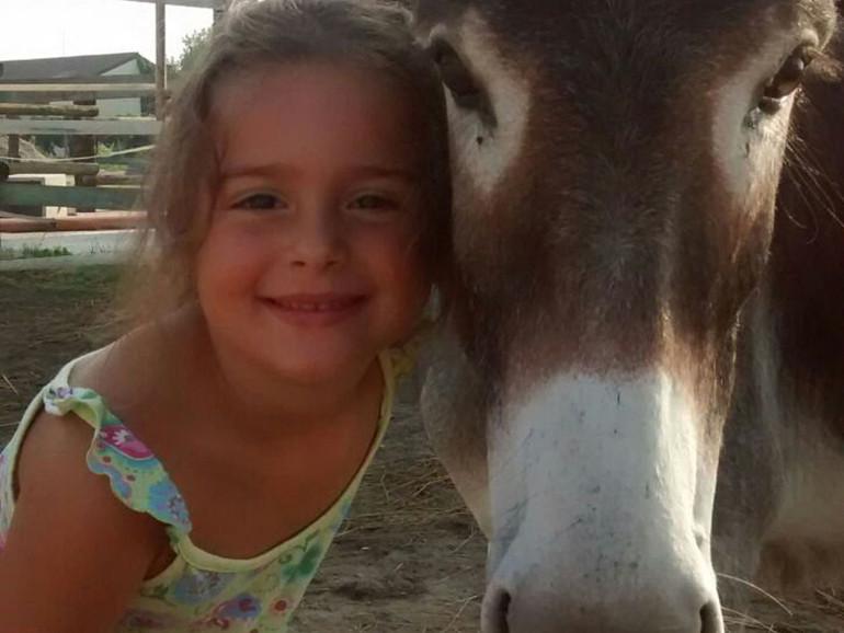 In punta di zoccoli tra campi e animali accoglienza di casa for Piani di casa di fattoria di cavalli